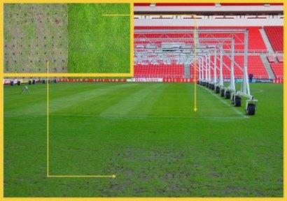 Определение зоны недостатки света на почве поля SGL-анализатором